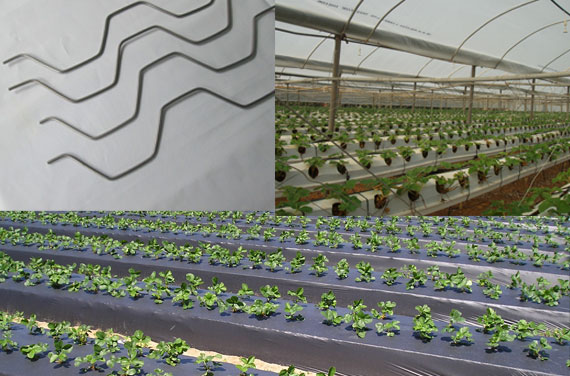 Greenhouse Accessories in south india